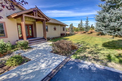 McCall Single Family Home For Sale: 237 West Jug Road