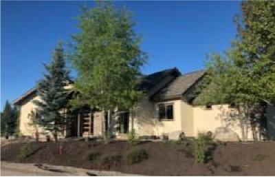 McCall Single Family Home For Sale: 100 Brundage View Court