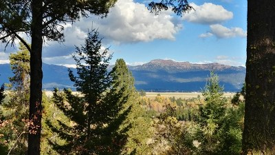 McCall Residential Lots & Land For Sale: Tbd Whispering Pines Court