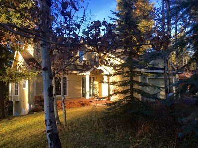 McCall Single Family Home For Sale: 625 Woodland Drive