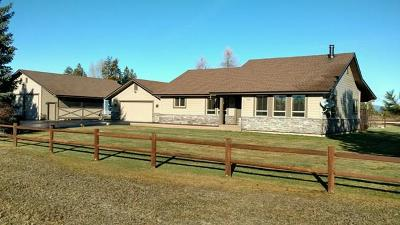 McCall Single Family Home For Sale: 13767 Clear View Road