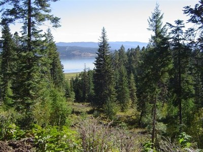 Cascade Residential Lots & Land For Sale: Tbd West Mountain Road