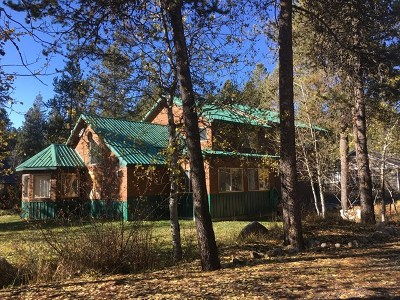 McCall Single Family Home For Sale: 460 Smitty Avenue
