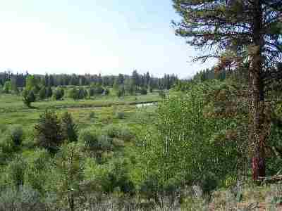 McCall Residential Lots & Land For Sale: 38 Cassia Court