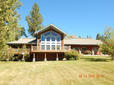 McCall Single Family Home For Sale: 45 Silver Fox Trail