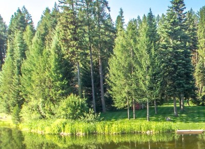 McCall Residential Lots & Land For Sale: 250 Rio Vista Blvd