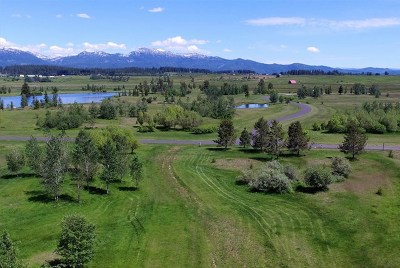 McCall Residential Lots & Land For Sale: Lot 10 River Ranch Road
