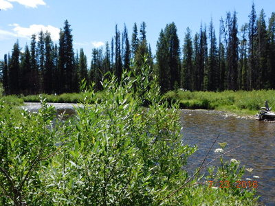 Idaho County, Valley County Residential Lots & Land For Sale: Lot 10 Secesh River Road