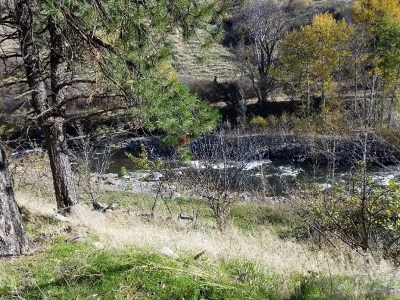 Adams County, Idaho County Residential Lots & Land For Sale: Hwy 95