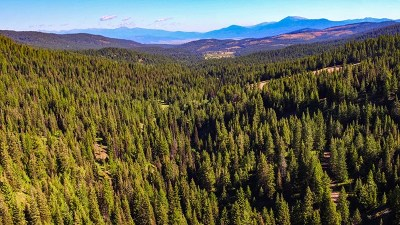 McCall Residential Lots & Land For Sale: 1 West Mountain Road