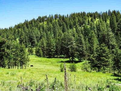 New Meadows Residential Lots & Land For Sale: Tbd No Business Road