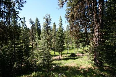 McCall Residential Lots & Land For Sale: 1004 Bitterroot Drive