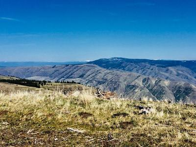Idaho County, Valley County Residential Lots & Land For Sale: 94 Pilgrim Ridge Road