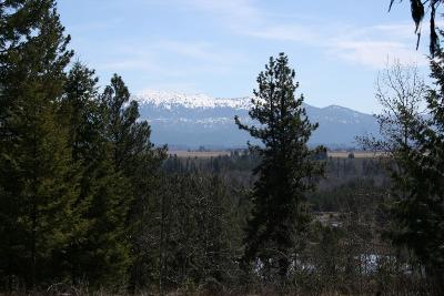 Residential Lots & Land For Sale: Lot 8 Blackhawk Lake Drive