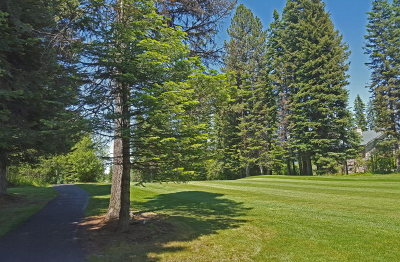 McCall Residential Lots & Land For Sale: Tbd Eagle Drive