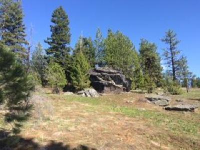 McCall Residential Lots & Land For Sale: Lot 15 Harrington Place