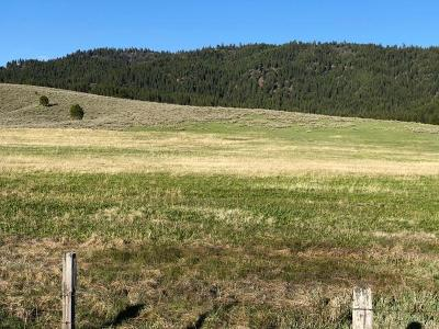 Cascade Residential Lots & Land For Sale: Tbd Skunk Creek Road