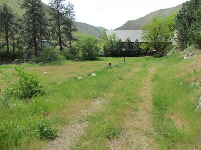 Riggins Residential Lots & Land For Sale: Tbd Chukar Lane