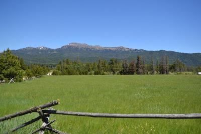 McCall Residential Lots & Land For Sale: Tbd Potter Lane