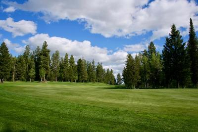 McCall Residential Lots & Land For Sale: 3918 Wolf Creek Court