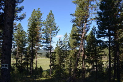 New Meadows Residential Lots & Land For Sale: Tbd Meadows Road