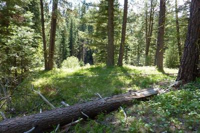 Cascade Residential Lots & Land For Sale: 62 Panorama Drive