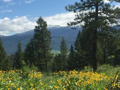 New Meadows Residential Lots & Land For Sale: Lot 16 Skyline Drive