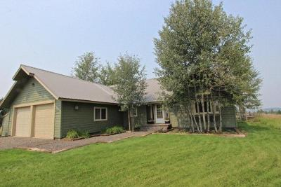 McCall Single Family Home For Sale: 321 Moon Drive