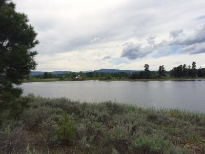 McCall Residential Lots & Land For Sale: 309 Otter Pond Lane