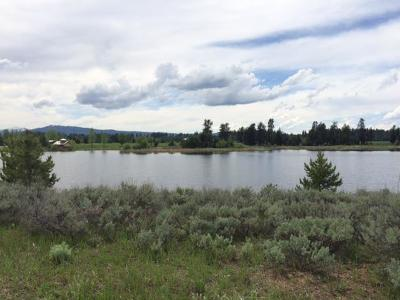 McCall Residential Lots & Land For Sale: 313 Otter Pond Lane