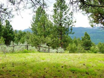 Cascade Residential Lots & Land For Sale: Lot 9 3rd Street