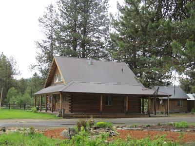 McCall Single Family Home For Sale: 934 Flynn Lane