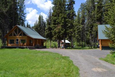 Idaho County, Valley County Single Family Home For Sale: 399 Secesh River Road