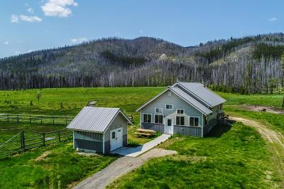 Idaho County, Valley County Single Family Home For Sale: 24852 Warren Wagon Road