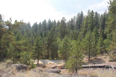 Cascade Residential Lots & Land For Sale: 1464 Crown Point Parkway