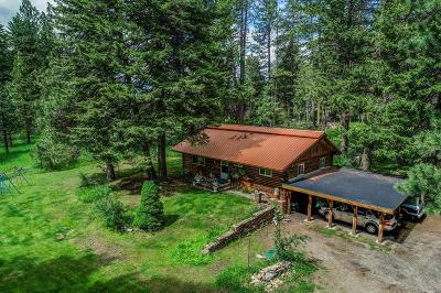 McCall Single Family Home For Sale: 1255 S Samson Trail