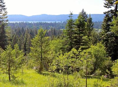 McCall Residential Lots & Land For Sale: Lot 32 Heaven's Gate Court