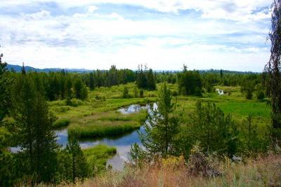 McCall Residential Lots & Land For Sale: Lot 7 Sawtooth Court