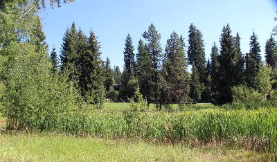 McCall Residential Lots & Land For Sale: 1014 Penstemen Place