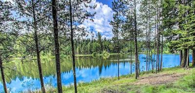 McCall Residential Lots & Land For Sale: 106 Eagle Shores Court