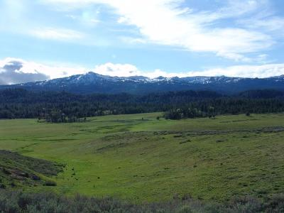 Cascade Residential Lots & Land For Sale: 10353 Gamann Drive