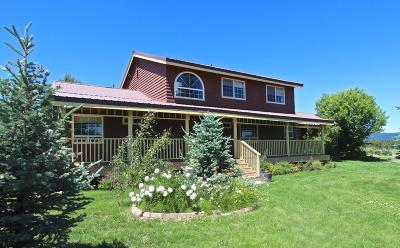 Cascade, Donnelly, Mccall, New Meadows Single Family Home For Sale: 1075 Ridge Road
