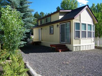 Cascade Single Family Home For Sale: 33 D Street