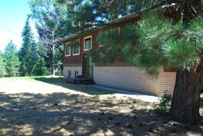 McCall Single Family Home For Sale: 901 Alpine Street