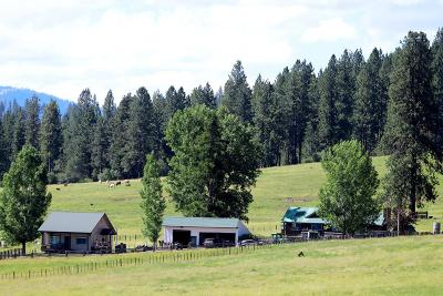 Cascade, Donnelly, Mccall, New Meadows Farm For Sale: 4220 Hwy 95