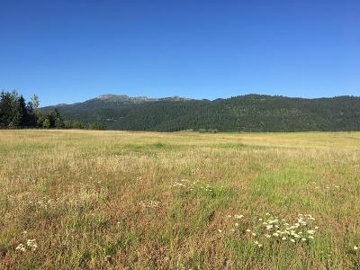 McCall Residential Lots & Land For Sale: Tbd Farm To Market Road