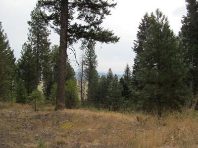 Cascade Residential Lots & Land For Sale: Tbd Rehn Loop