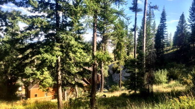 Tamarack Residential Lots & Land For Sale: 89 Veil Cave Court