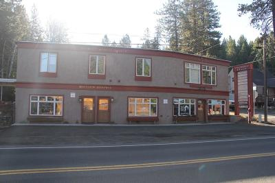 McCall Commercial For Sale: 321 N 3rd Street