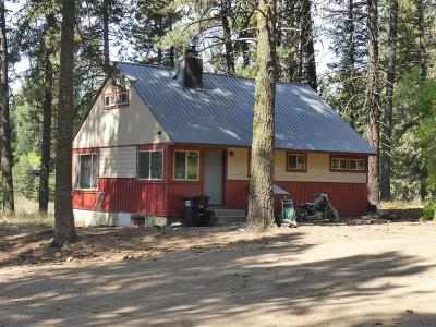 McCall Single Family Home For Sale: 307 N 3rd Street